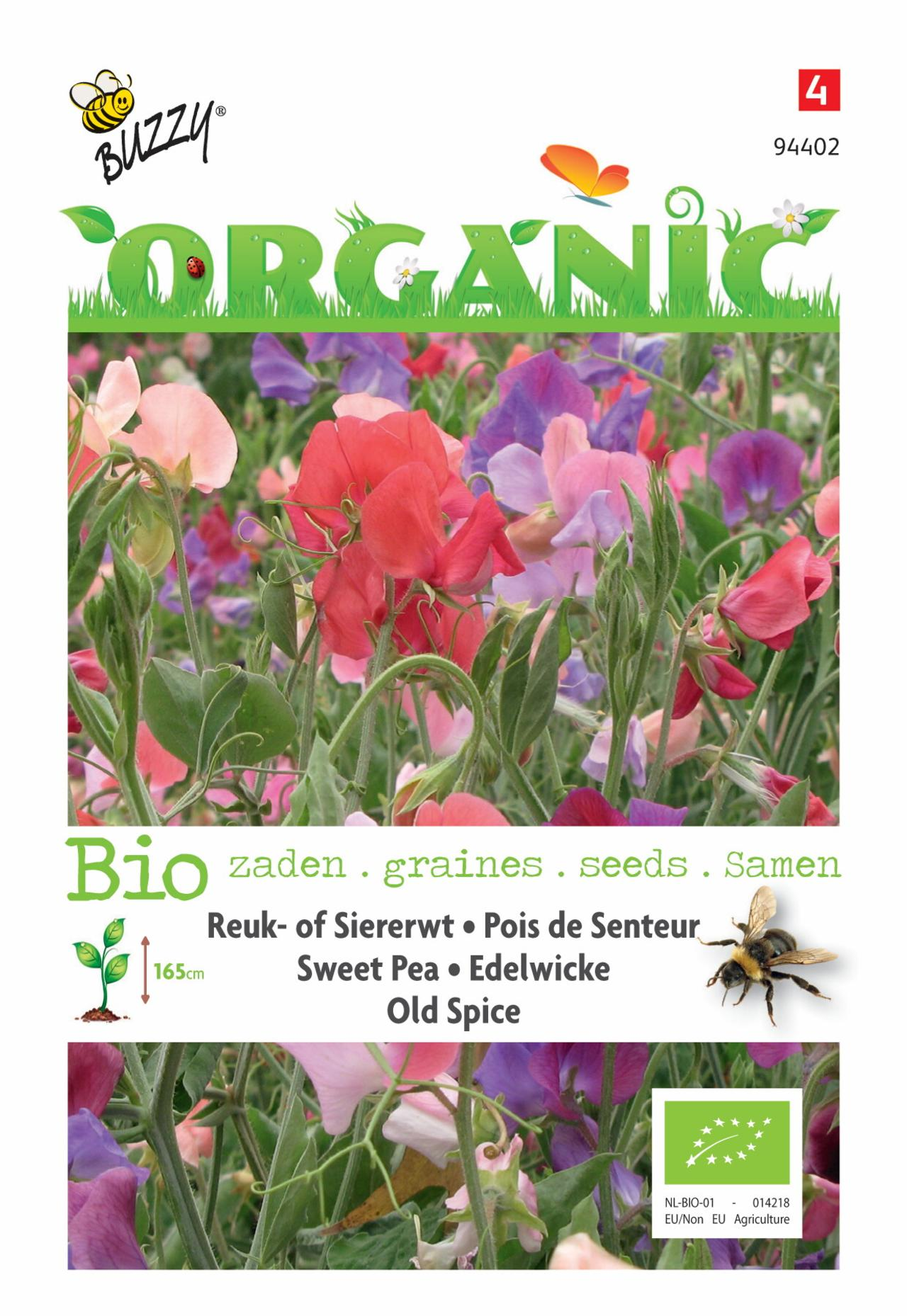 Lathyrus odoratus 'Old Spice' (BIO) plant