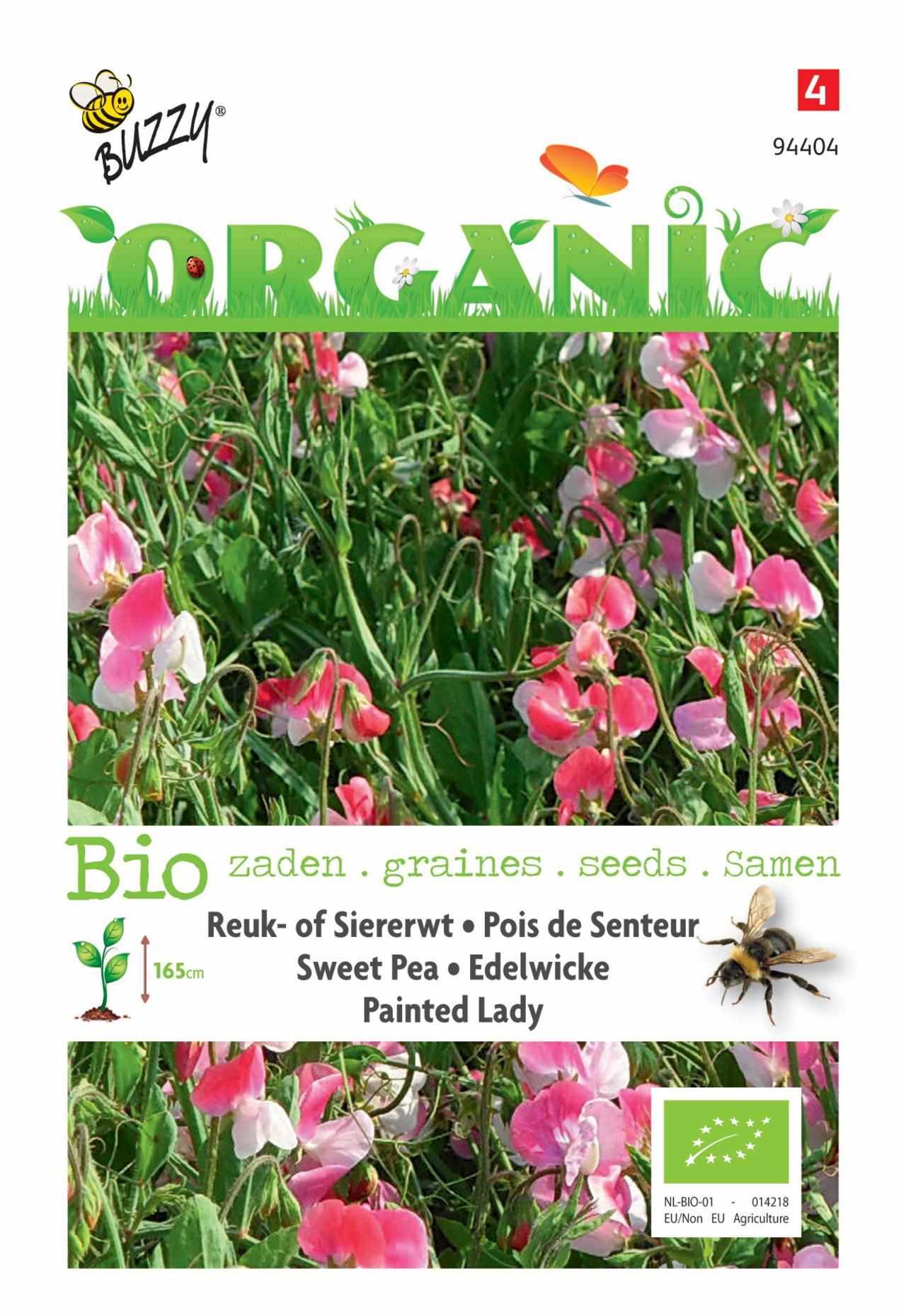 Lathyrus odoratus 'Painted Lady' (BIO) plant