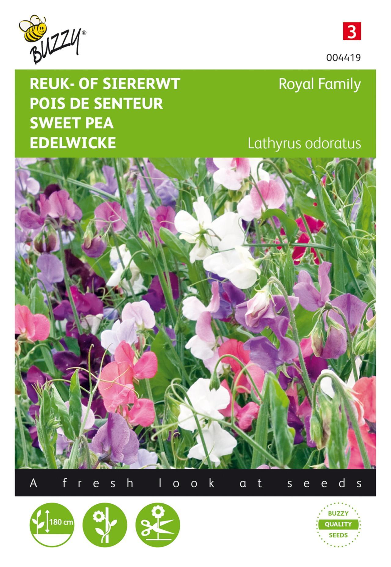 Lathyrus odoratus 'Royal Family gemengd' plant
