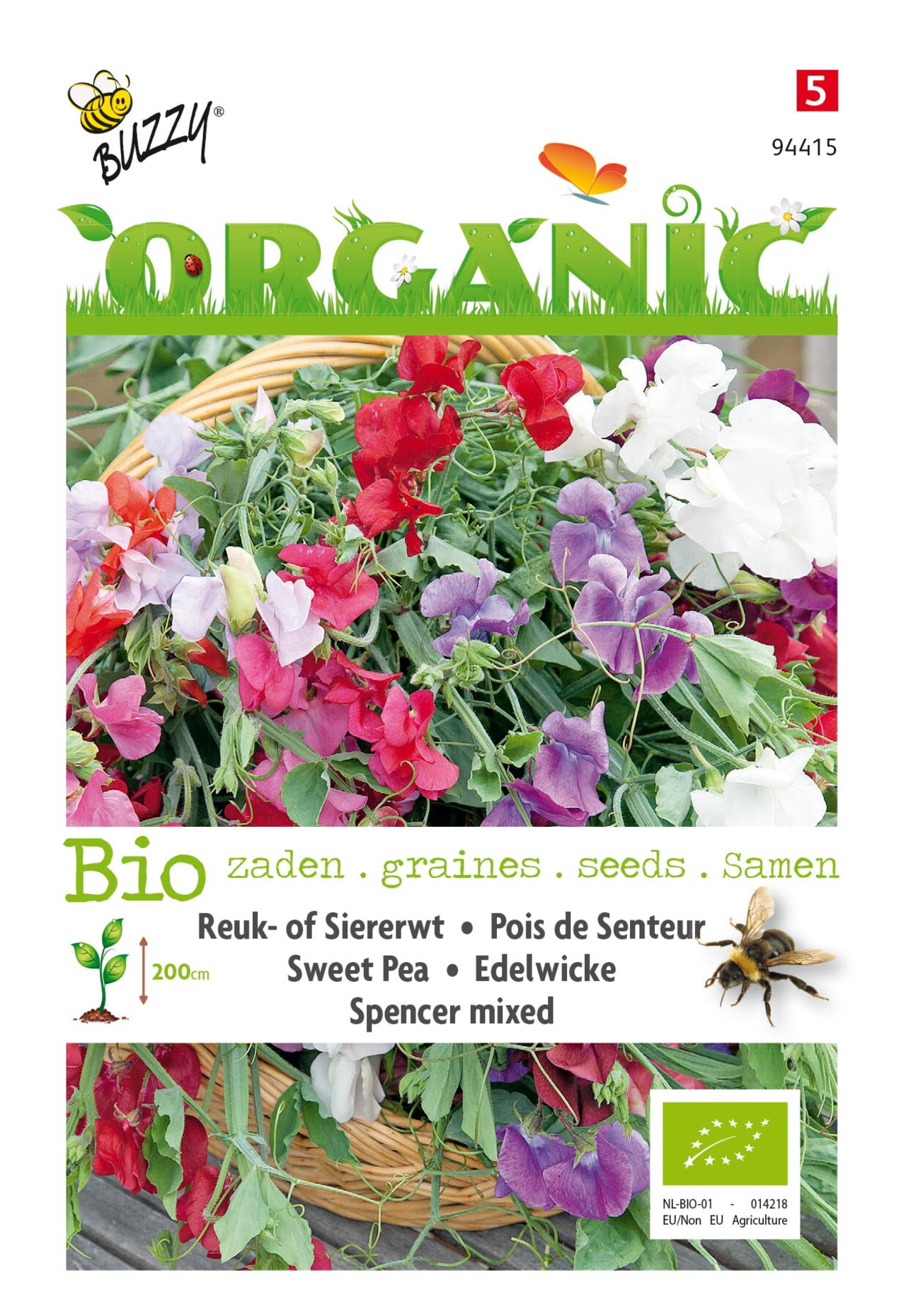 Lathyrus odoratus 'Spencer' (BIO) plant