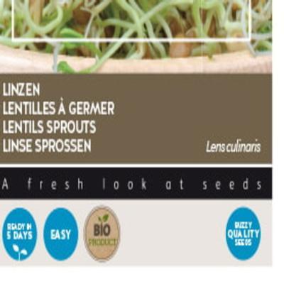 lens-culinaris-bio