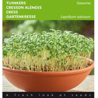 lepidium-sativum