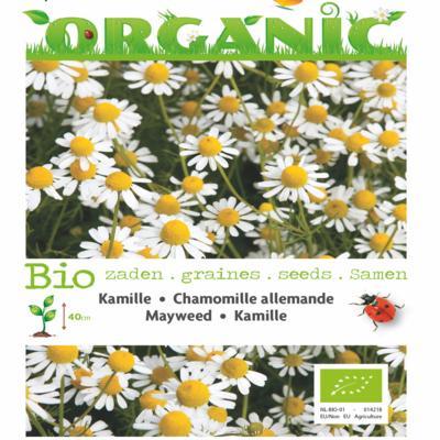 matricaria-chamomilla-bio