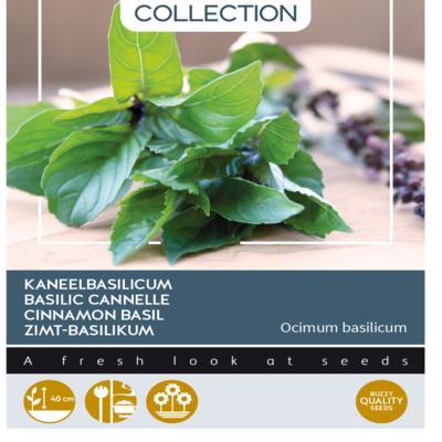 ocimum-basilicum-cinnamomum