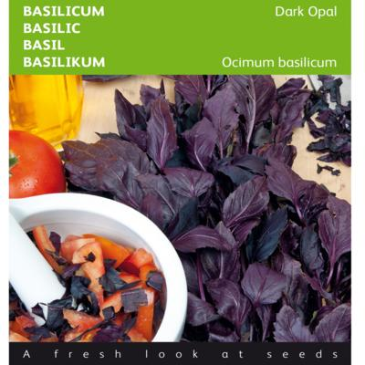 ocimum-basilicum-dark-opal