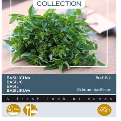 ocimum-basilicum-greek-basil-bush-ball