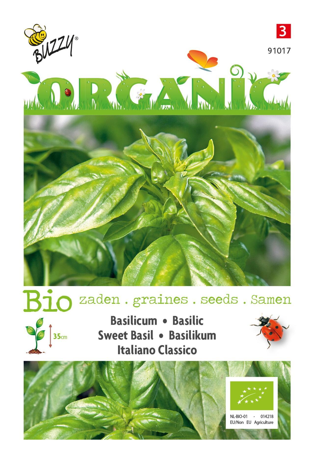 Ocimum basilicum 'Italiano Classico' (BIO) plant