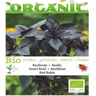 ocimum-basilicum-red-rubin-bio