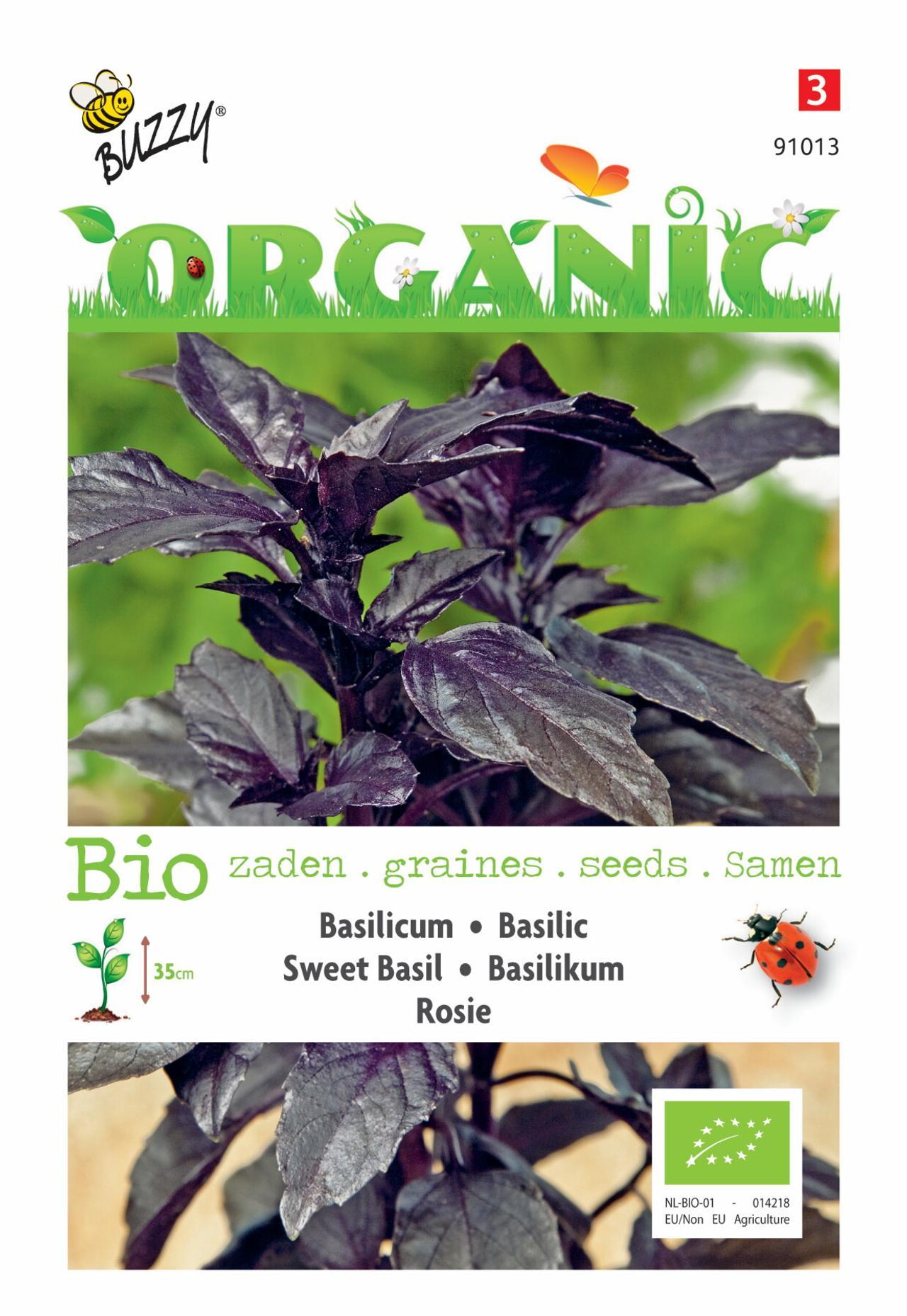 Ocimum basilicum 'Rosie' (BIO) plant