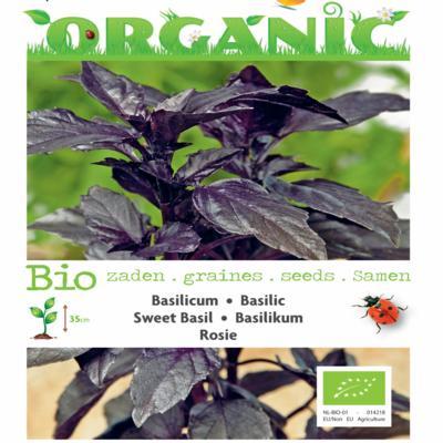 ocimum-basilicum-rosie-bio