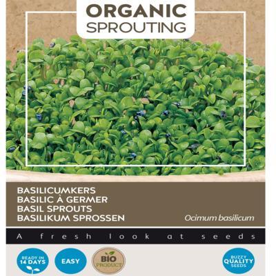 ocimum-basilicum-sprouting-basilicumkers-bio