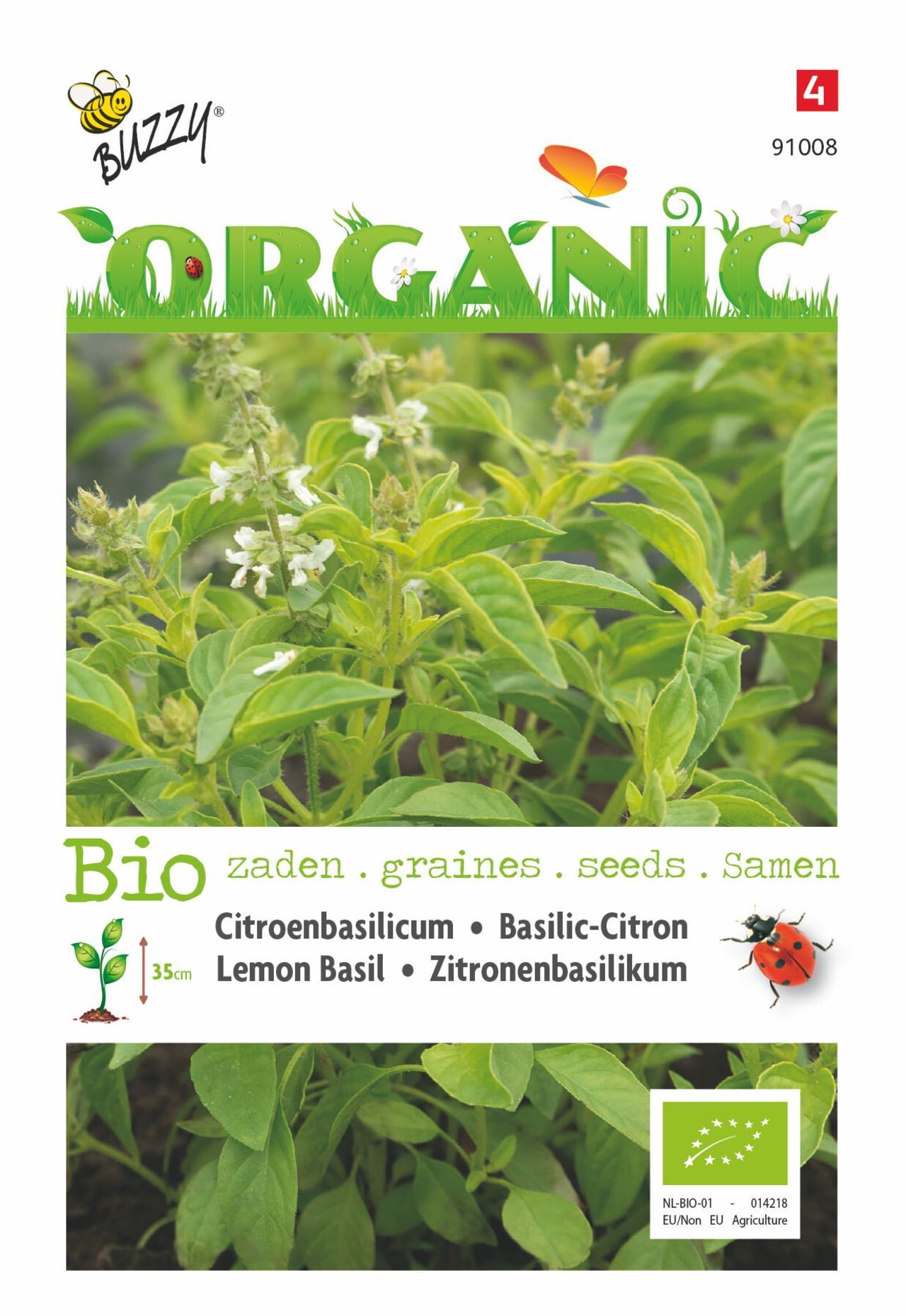 Ocimum basilicum var. citriodorum (BIO) plant
