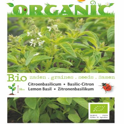 ocimum-basilicum-var-citriodorum-bio