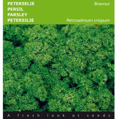 petroselinum-crispum-bravour