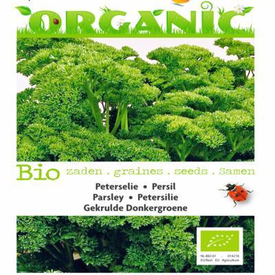 petroselinum-crispum-gekrulde-donkergroene-bio