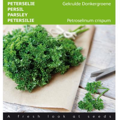 petroselinum-crispum-gekrulde-donkergroene