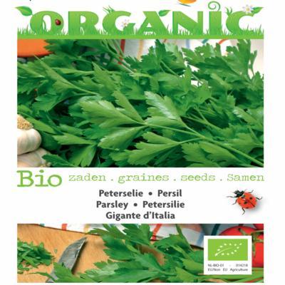petroselinum-crispum-gigante-ditalia-bio