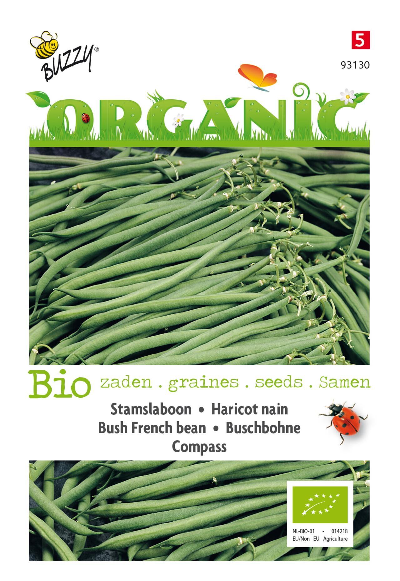 Phaseolus vulgaris 'Compass' (BIO) plant