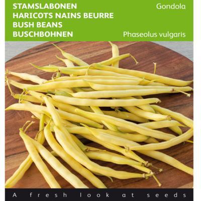 phaseolus-vulgaris-gondola