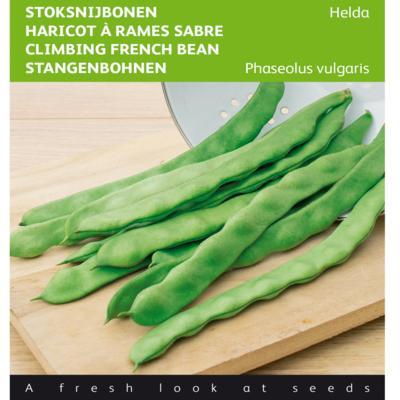 phaseolus-vulgaris-helda