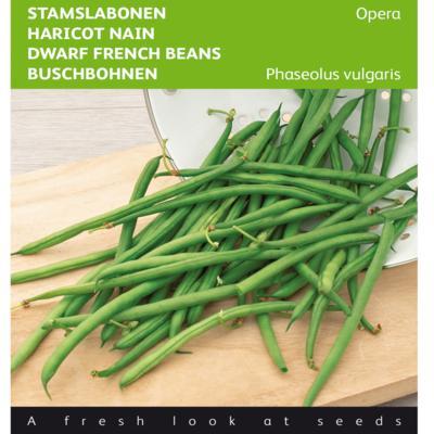 phaseolus-vulgaris-opera
