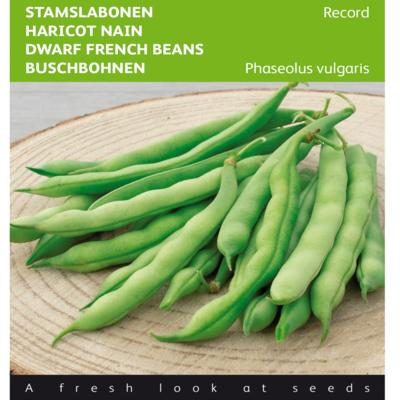 phaseolus-vulgaris-record