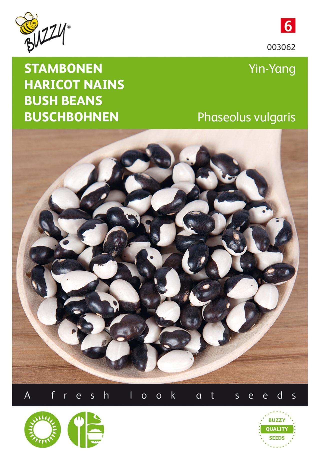 Phaseolus vulgaris 'Yin Yang' plant