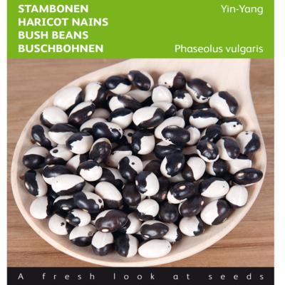 phaseolus-vulgaris-yin-yang