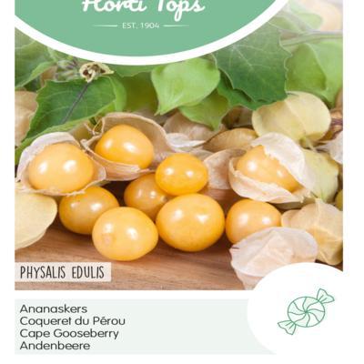 physalis-peruviana