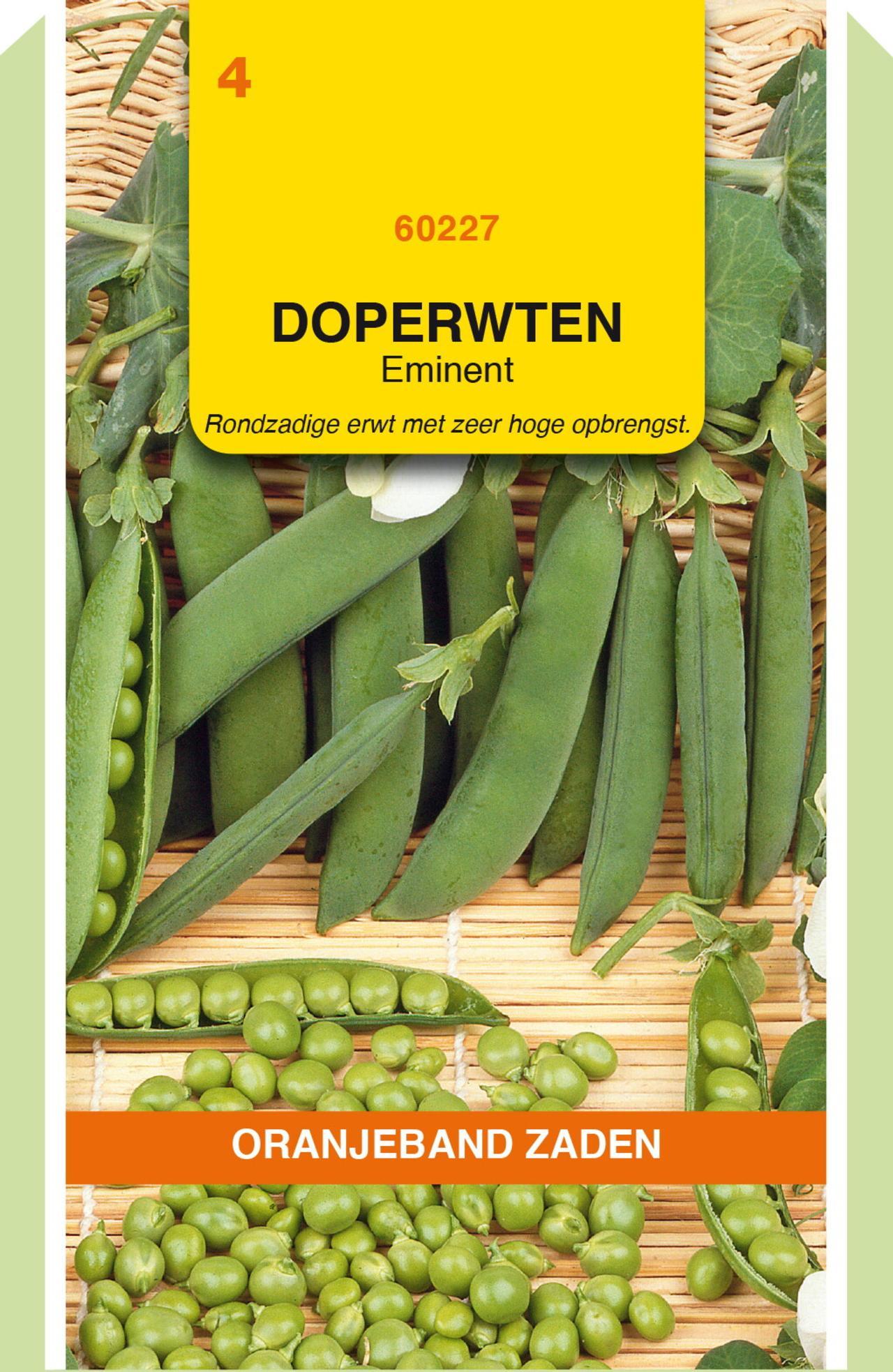 Pisum sativum 'Eminent' plant