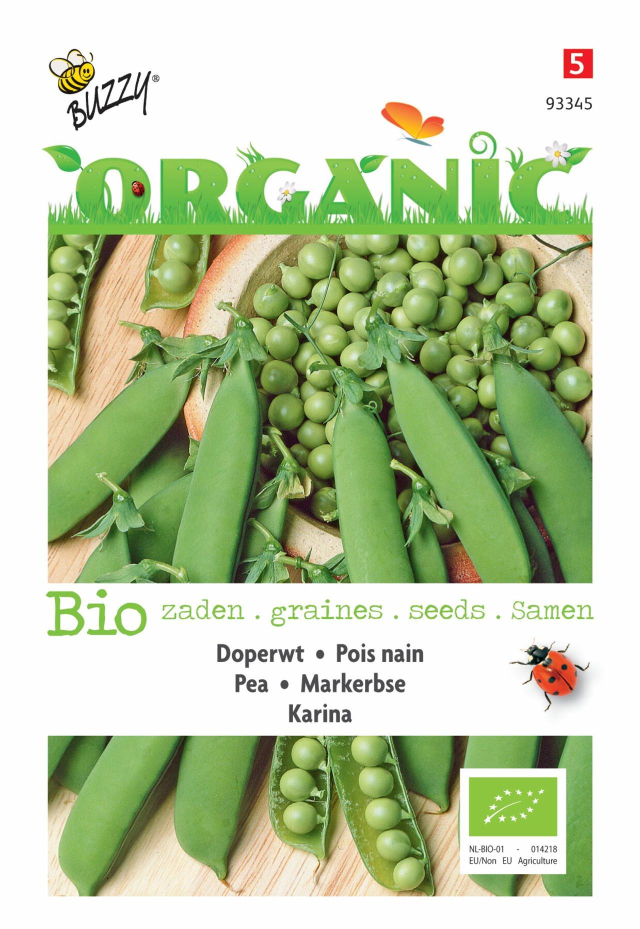 Pisum sativum 'Karina' (BIO) plant