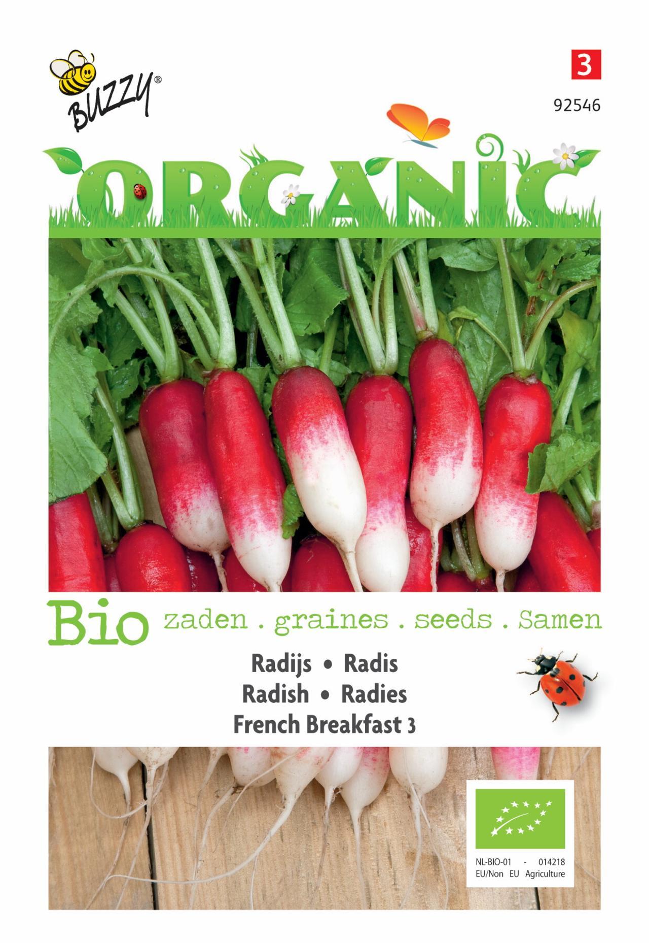 Raphanus sativus 'French Breakfast 3' (BIO) plant