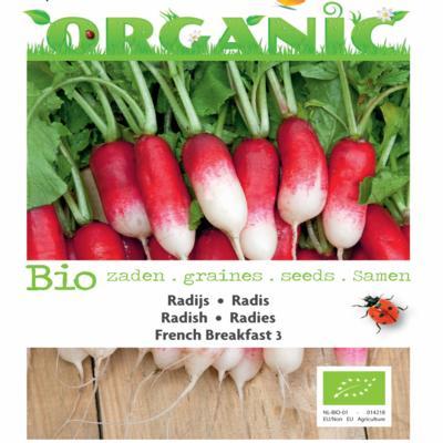 raphanus-sativus-french-breakfast-3-bio