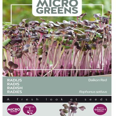 raphanus-sativus-rode-daikon-microgreens