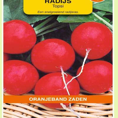 raphanus-sativus-topsi