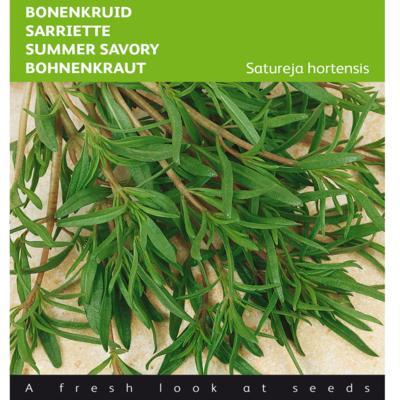 satureja-hortensis
