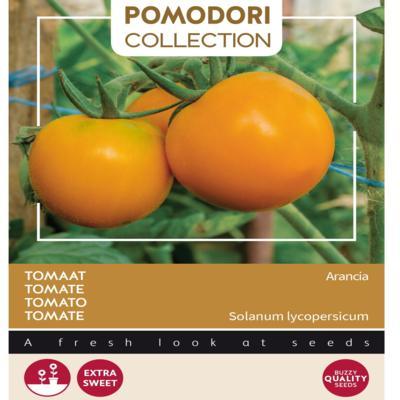 solanum-lycopersicum-arancia