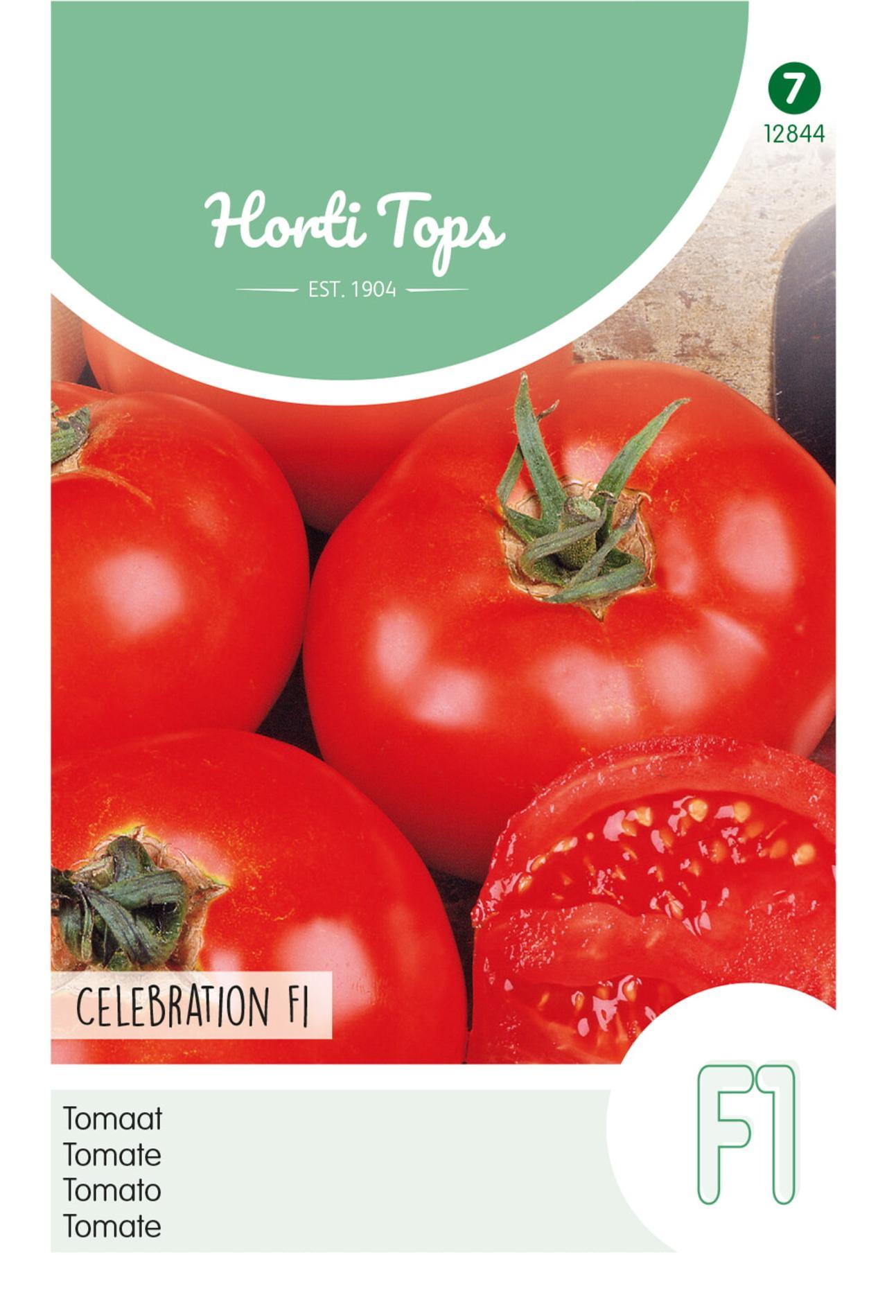 Solanum lycopersicum 'Celebration F1' plant