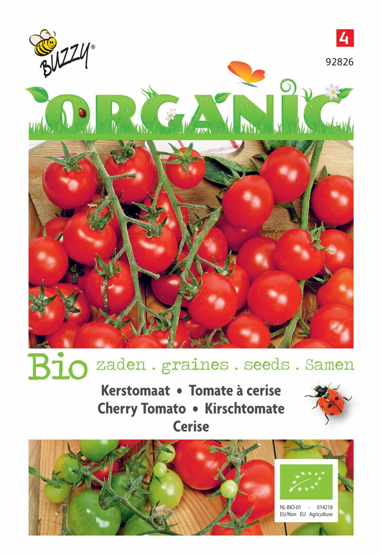 Solanum lycopersicum 'Cerise' (BIO) plant