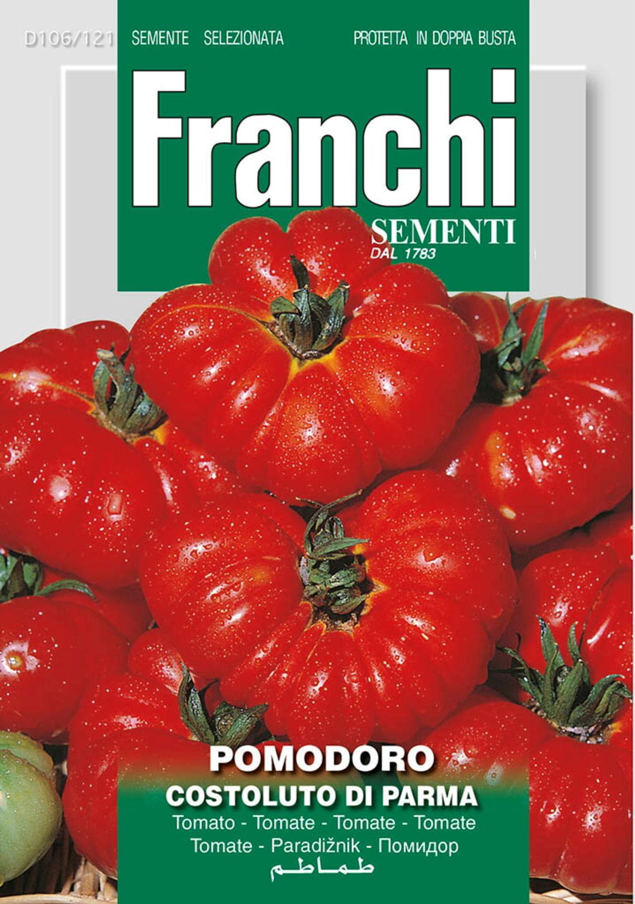 Solanum lycopersicum 'Costoluto de Parma' plant