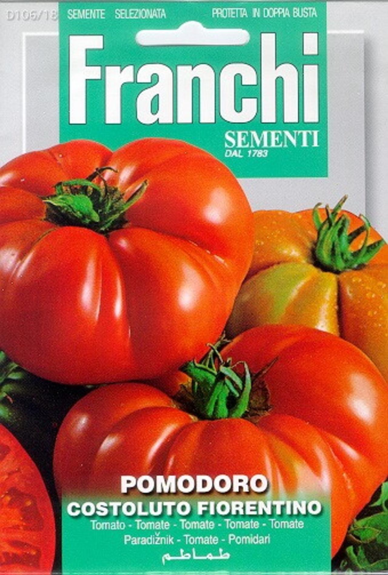 Solanum lycopersicum 'Costoluto Fiorentino' plant