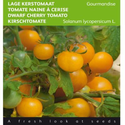 solanum-lycopersicum-gourmandise