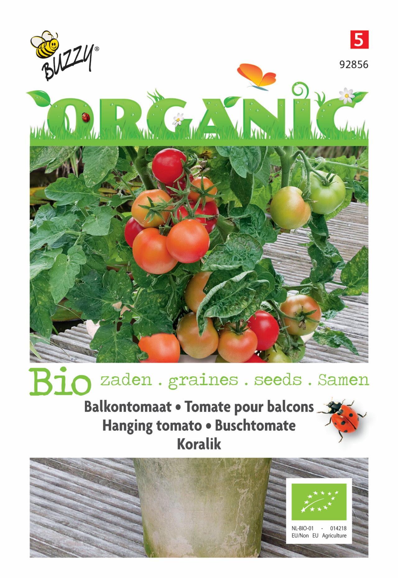 Solanum lycopersicum 'Koralik' (BIO) plant