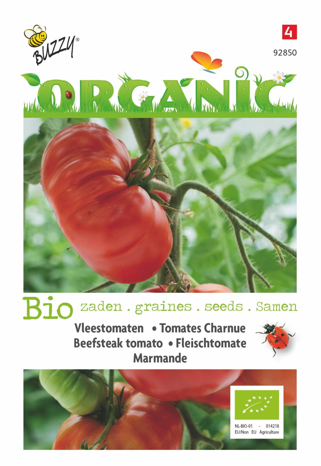 Solanum lycopersicum 'Marmande' (BIO) plant