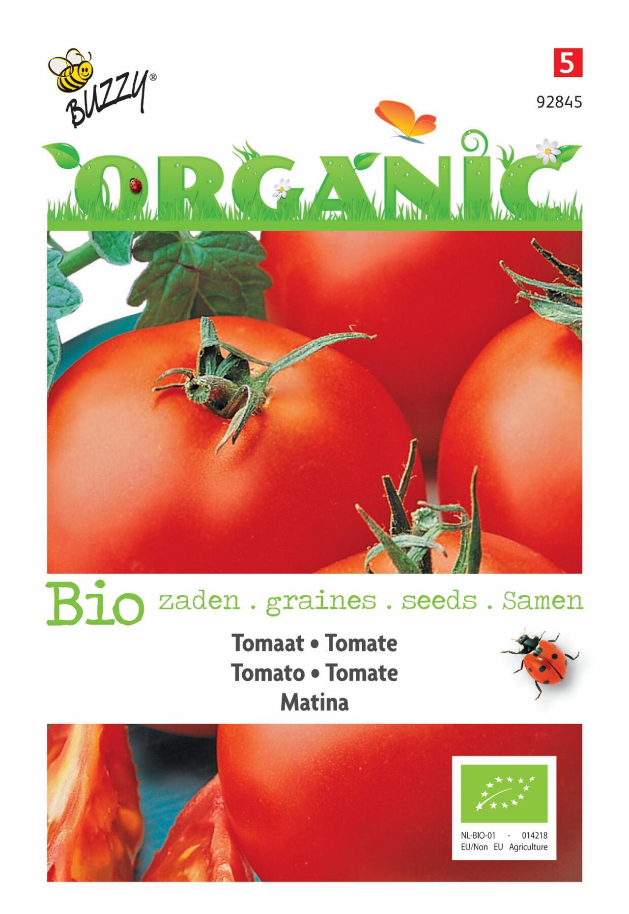 Solanum lycopersicum 'Matina' (BIO) plant