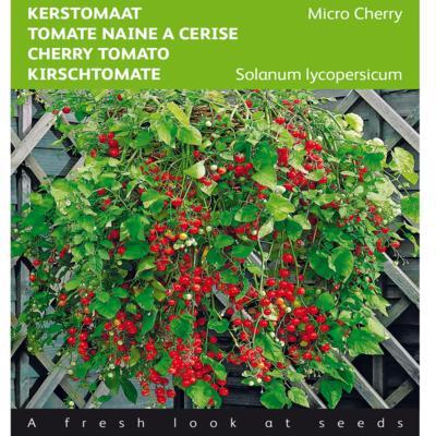 solanum-lycopersicum-micro-cherry
