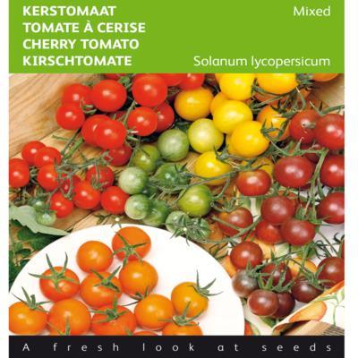 solanum-lycopersicum-mixed