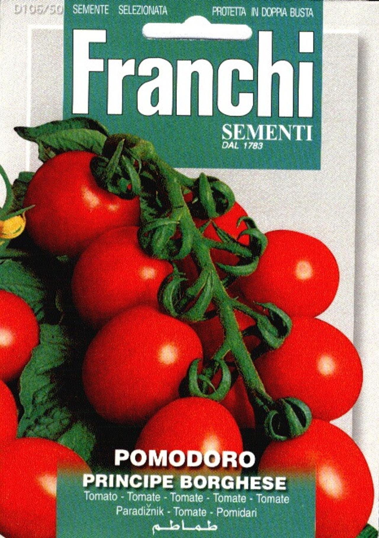 Solanum lycopersicum 'Principe Borghese' plant