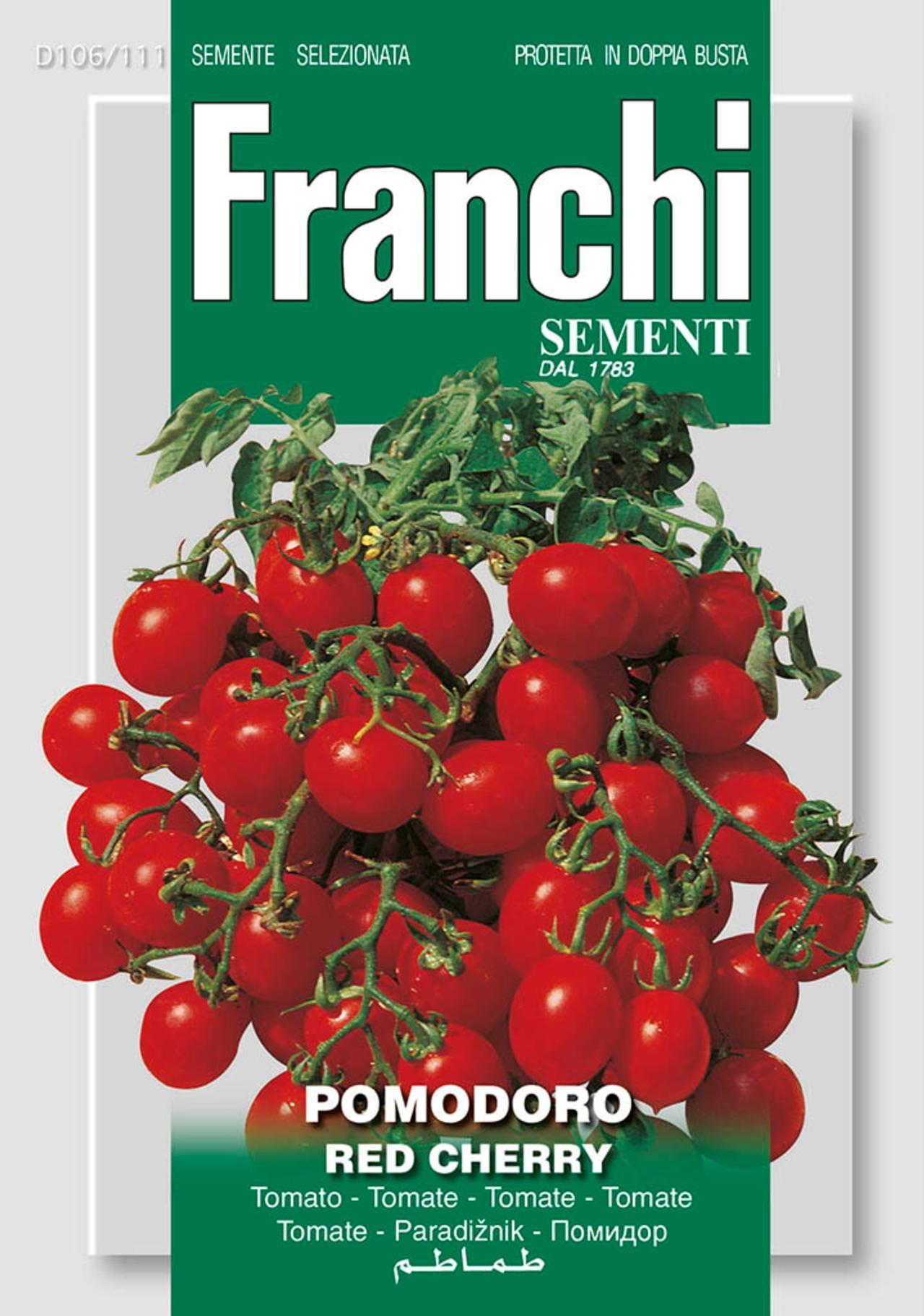 Solanum lycopersicum 'Red Cherry' plant
