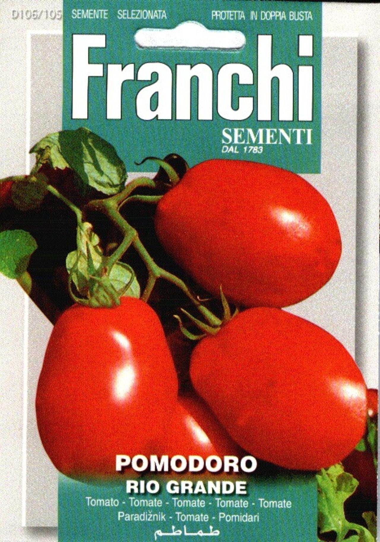 Solanum lycopersicum 'Rio Grando' plant